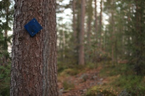 Nuuksio_marked_trail